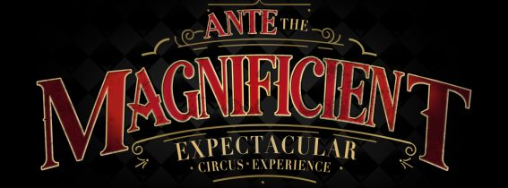 The Magnificient Expectacular Circus Experience