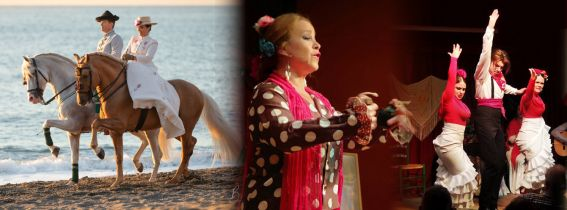 Andalusian Night [Live flamenco show + Horse show + dinner and drinks]