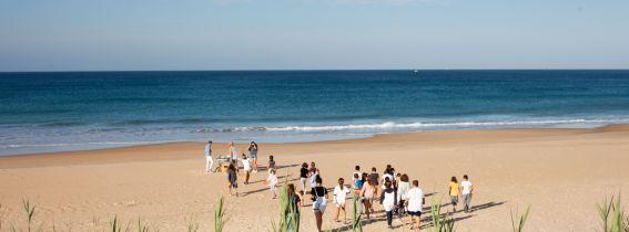 INNOVACCIÓ AMBIENTAL - Limpieza de Playa La Devesa El Saler