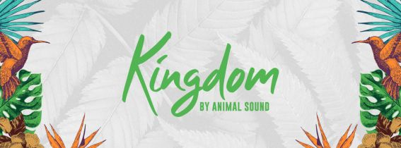 Kingdom by Animal Sound
